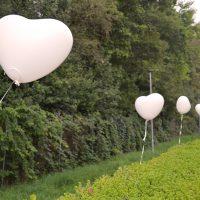 Herzen Luftballons